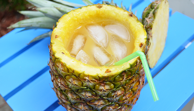 Lapu Lapus for Everyone!!